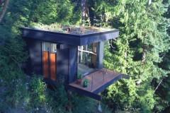 Лесной офис